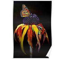 Autumn Monarch Poster