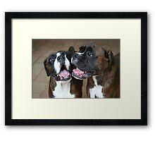 Luthien & Arwen -Boxer Dogs Series- Framed Print