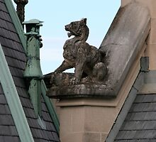 Rooftop at Biltmore by hbryson