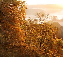 Gold Fog of Autumn Sunrise by Antanas