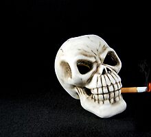 Smoking Kills by Maria Dryfhout