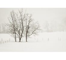 Open Snow Fields Photographic Print