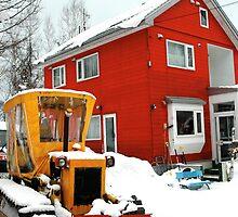 Little house, Little tractor by Leila  Koren