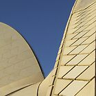 Tiles, Sydney Opera House,  by Katherine Wiles