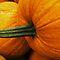 Pumpkins!!