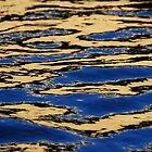 Liquid Gold by Inishiata