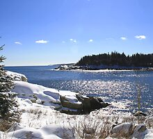 Herring Cove In Winter by HALIFAXPHOTO