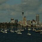 The Auckland Skyline by Kyle  Jackson