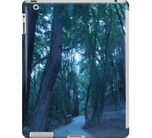 The Trails Of The Forest iPad Case/Skin