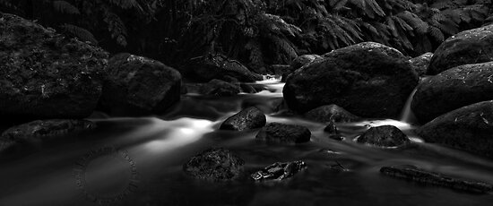 Flow, River of my Soul by FuriousEnnui