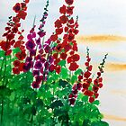 Hollyhocking  by Louise White
