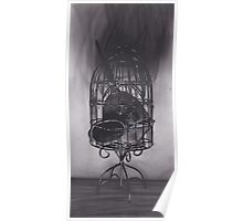 Realism Charcoal Drawing of Mirrors in Birdcage Poster