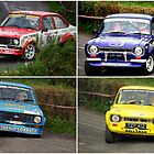 FORD   ESCORTS  by TIMKIELY