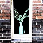 Window to a Vase by Pumpkinpizza