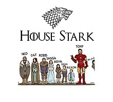 Game of thrones House Stark and Tony Stark Photographic Print
