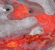 Sea of  Fire by Marguerite Foxon