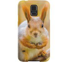 Red euroasian squirrel on the maple branch Samsung Galaxy Case/Skin