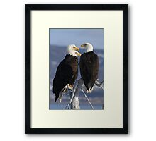STOCK ~ Just Three Of A Kind Framed Print