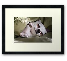 Is Morning, Bring Coffee Pls Framed Print