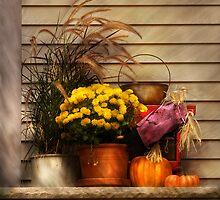 Autumn Still Life II by Mike  Savad