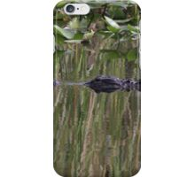 Reflections P_7781 iPhone Case/Skin