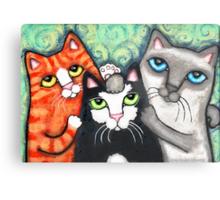 Siamese Tabby and Tuxedo Cats Posing Art Print Metal Print