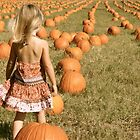 Pumpkin Field by JTomblinson