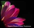 PINK Collection for the Cure - Support Breast Cancer Awareness  by trwphotography