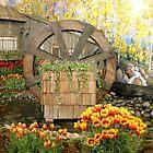 Water Wheel by Rhonda R Clements