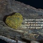 No heart should be green with envy… by Nicole  Markmann Nelson
