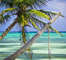 Paradise by Nick  Cardona