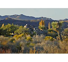 Joshua Tree National Park - A Landscape to Die For Photographic Print