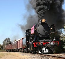 J541 on the Victorian Goldfields Railway by Jonathan Newton