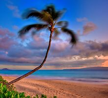 Perfect Relaxation by Randy Jay Braun