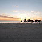 Camel trail by brettspics