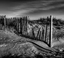 Dune Fence by Andrew Pounder