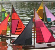 Boating in Paris by Pamela Jayne Smith