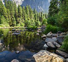 Yosemite Merced River by Reese Ferrier