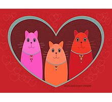Three Wishes For Valentine's Day Photographic Print