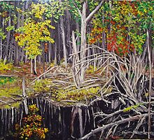 Beaver Pond by SharonGonzalez
