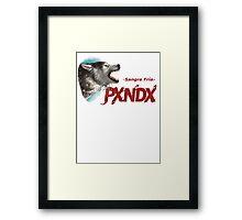 PXNDX Sangre Fria - grupo Panda Mexico Framed Print