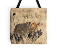 Female Lion Moving the Kill, Maasai Mara, Kenya  Tote Bag