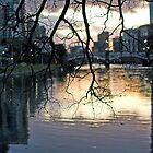 Winter Light by dangergoinoff
