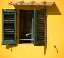 Colourful window by Moshe Cohen