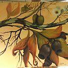 Australian gumnuts by Vickyh