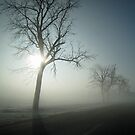 Winter Fog by Donna R. Carter