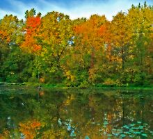 Splendours of autumn  by Gaby Swanson  Photography