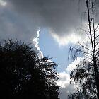 Heart in the sky by Dorthy Ottaway