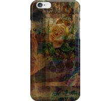 Oriental Glimpse iPhone Case/Skin
