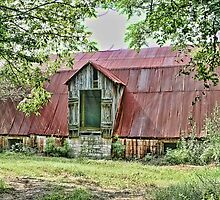 Mule Barn by Patricia Montgomery
